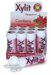 Xylit Kaugummi Cranberry, Dose mit 30 Stück