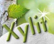 Xylit (Birkenzucker), 500gr Tüte, naturrein & gentechfrei